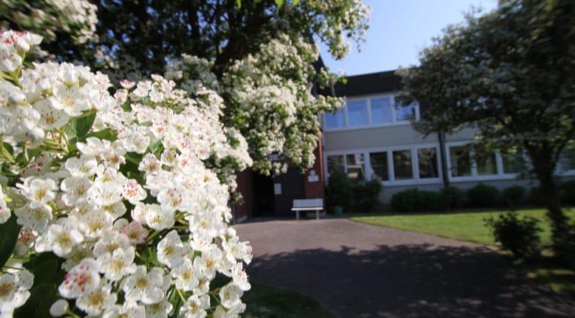 Eingangsbereich Blumen