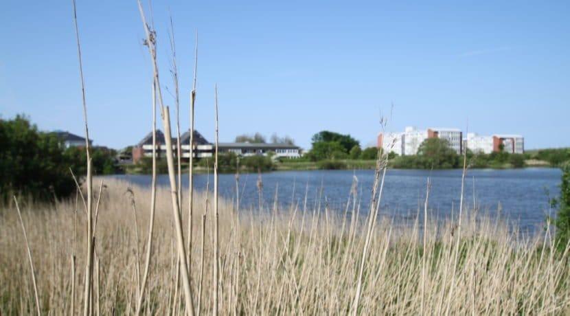Frontansicht vom See 2
